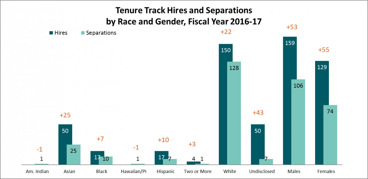 Tenure Track Hires and Separations by Race and Gender, Fiscal Year 2016-17