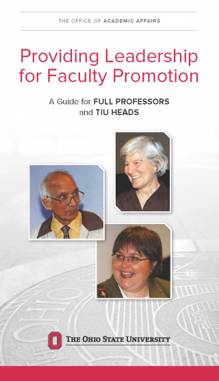 Guide for full professors and TIU chairs/directors